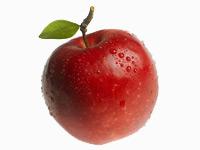 vocne-sadnice-jabuka-jonagold